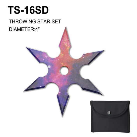 Picture of TS-16SD